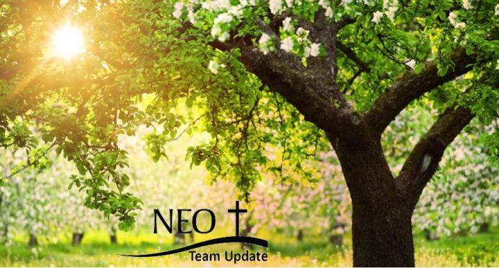 NEO Team Update 7-23-20