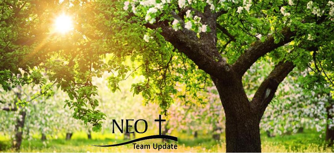 NEO Team Update 7-23-20